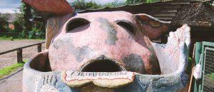Abris Cochon