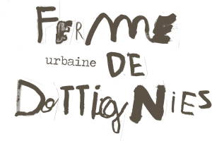 Ferme Urbaine Dottignies La Prairie