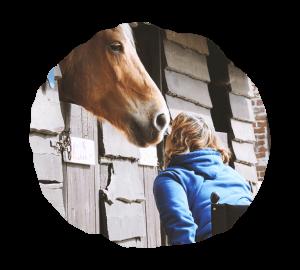 cheval ferme urbaine